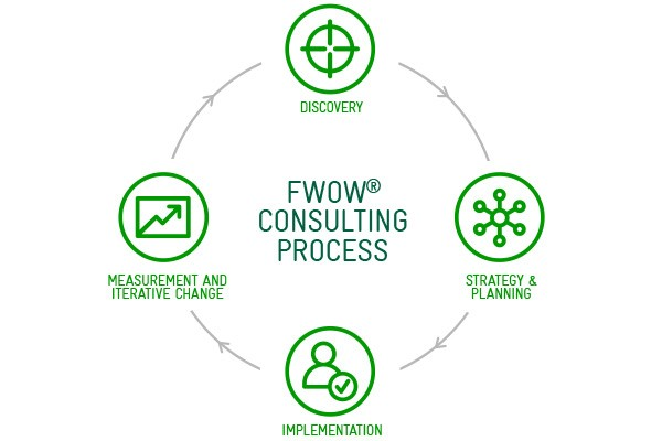 FWOW Consulting process