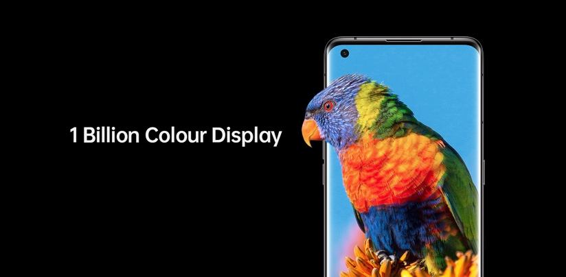 Oppo X 3 Find with brightly coloured parrot on its screen to demonstrate the phone's 1 billion colour display.