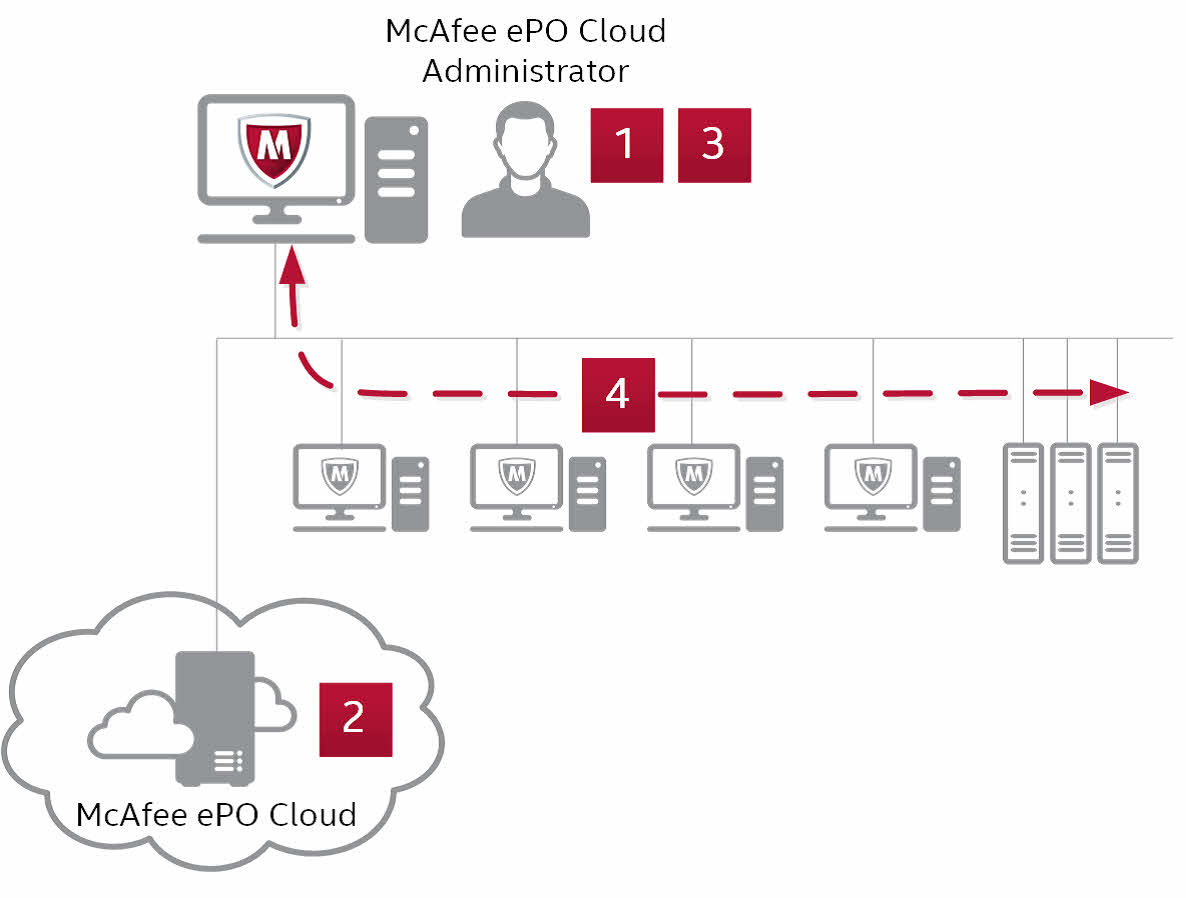 McAfee Endpoint Protection Essential activation and deployment process